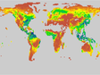 Global vegetation productivity monthly data obtained by CNRM-CM6-1 mode of CMIP6 (1850-2014)