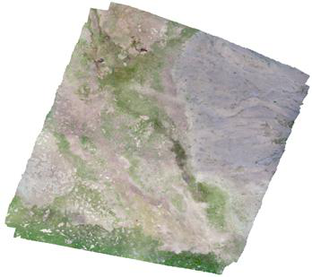 Drone orthophoto image and DSM of Qumalai wetland plot (2018)