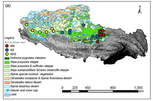 The vegetation biomass data of the North Tibet transect(2017)