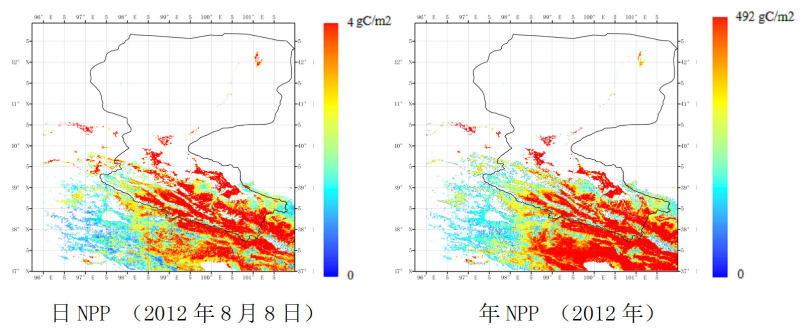 HiWATER: Net Primary Productivity product of the Heihe River Basin