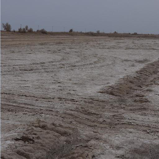 Investigation report on soil salinization around Aral Sea