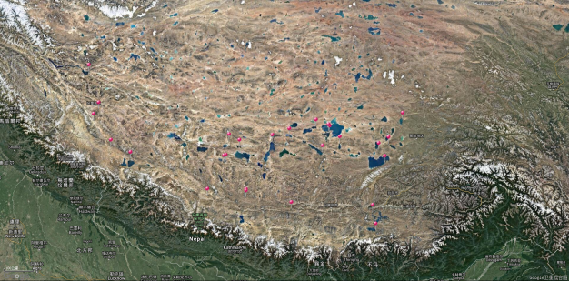 Fish collection dataset of the Tibetan Lakes in 2018