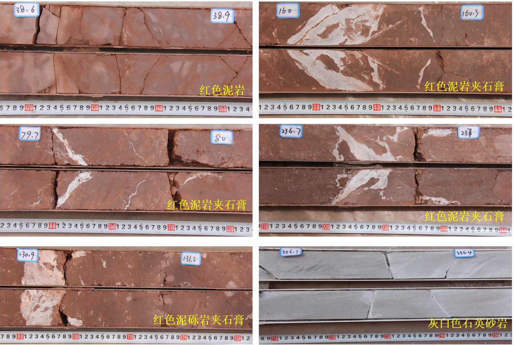 Lithology description of a 400 m-thick Paleocene strata borehole in the Xiaojinggu area, Yunnan