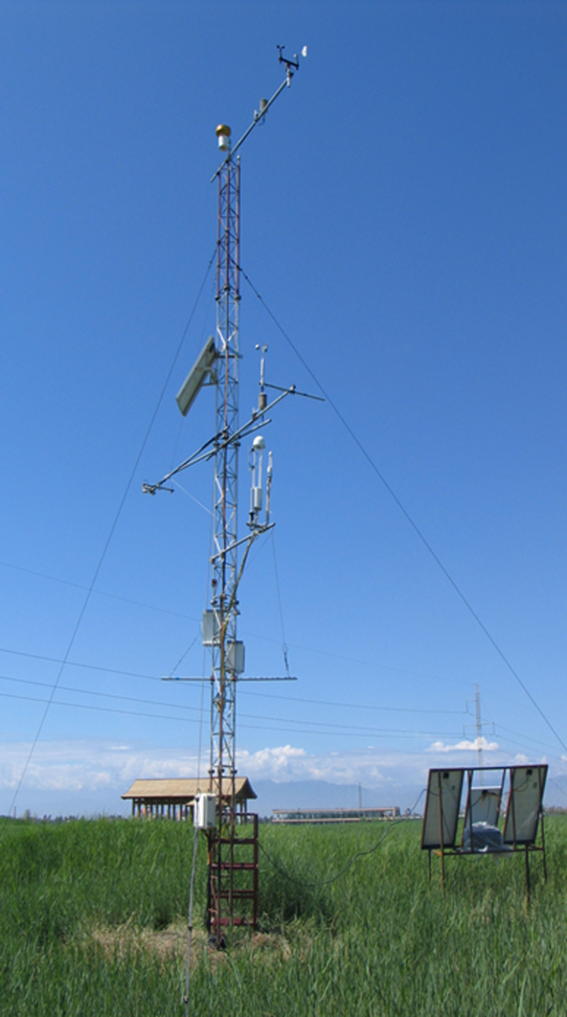 HiWATER: Dataset of hydrometeorological observation network (automatic weather station of Zhangye wetland station, 2013)