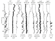 Geochemical Data Set of Lacustrine Core in Luanhaizi Lake (0-859 cm)
