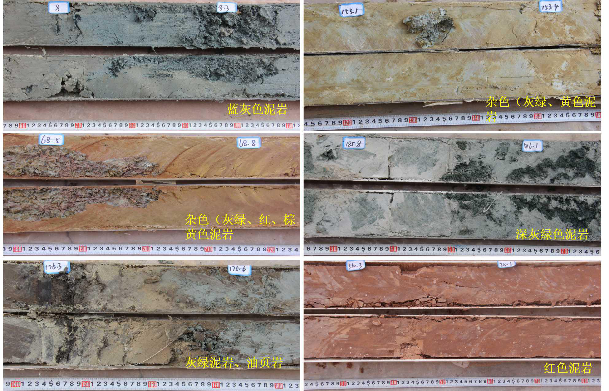 Lithology description of a 300m-thick Oligocene borehole strata in the Qujing area, Yunnan