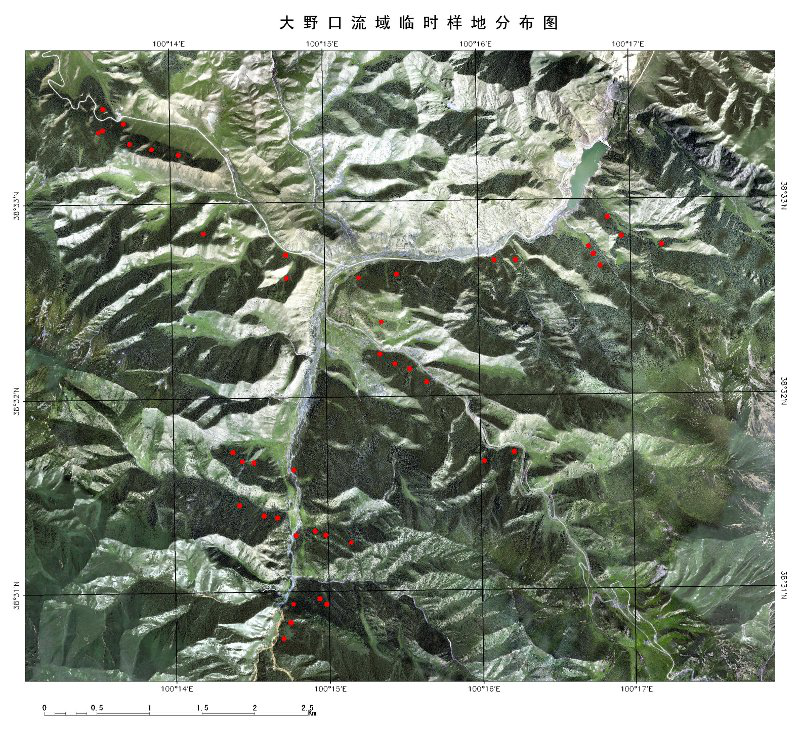 WATER: Dataset of forest structure parameter survey at the temporary forest sampling plot in the Dayekou watershed foci experimental area (2008)