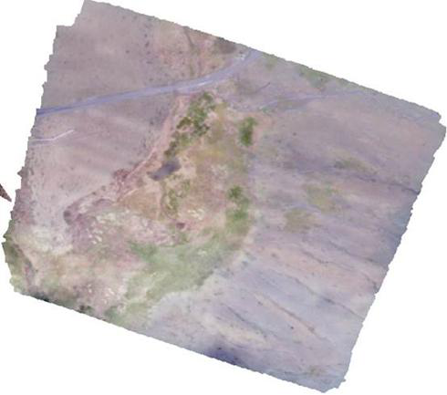 Drone orthophoto image and DSM of Qumalai alpine meadow plot (2018)