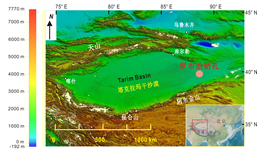 Stable Isotope Dataset of the Sediment Core Retrieved from Lop Nor in the Tarim Basin/Dataset of field investigation and field photos  of the Tibetan Plateau