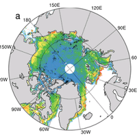 Predictor for theseasonal Arctic sea ice based on statistical regression