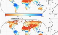 Global Evapotranspiration/gross Primary Production Dataset Published