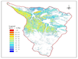 Spatial distribution of forest biomass 1m resolution in Tianlaochi watershed (1961-2010)